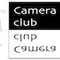 Toonevent fotowedstrijd Cameraclub Halle met prijsuitreiking