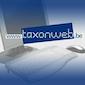 Hoe vul ik mijn belastingen in op Tax on web?