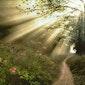 Nature-fullness stiltewandeling