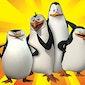 De pinguïns van Madagascar