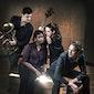 Tuur Florizoone Trio & Claron McFadden - Secrets