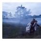 Elise Caluwaerts & Kim Van den Brempt - Nightfall