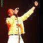 Plectrumfestival: tribute shows van Queen, Rammstein, ... GRATIS INKOM !