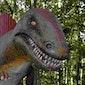 Poco Loco 7-12 jarigen Museum Natuurwetenschappen Brussel