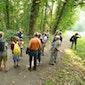 De natuur in zomerdracht – Vlaams-Brabant – Bertembos