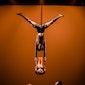 Casus (Australië) - Knee Deep (circus)