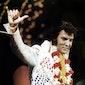 Elvis komt naar het Zomercafé