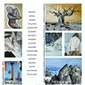 Atelier Suzy en Ateljee15 | Tentoonstelling en opendeurdag