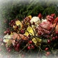Workshop bloemschikken met KVLV-Munkzwalm bij Fine Fleurs