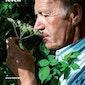 Raf Willaert - De Plantenfluisteraar