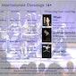 Internationale dansstage 16+ in juli te Brugge