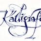 Kalligrafie - Voorjaar 2016