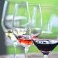 Wijnproeverij ten voordele van De Lage Drempel