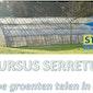 Cursus Serretuinen of hoe groenten telen in de serre