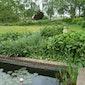 Gemeentelijke Open tuinendag : bezoek gratis 7 groene pareltjes