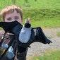 gratis wandeling: Vleermuizenwandeling voor kinderen