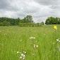 Inhuldiging 100ste ha van het natuurreservaat Middenloop Zwalm