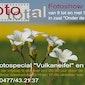 Foto Total Fotoshow