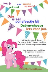 pony feestje