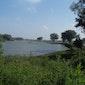Herbronnen langs de Maas