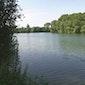 Wandeling om en rond de Eglegemvijver in Hombeek