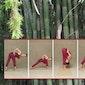 Yoga en goede voornemens voor 2017 ?