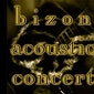Bizon Blues Concert: The Basement Apes - Ian & Craig (IRL/USA)