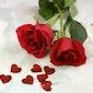 Bloemschikken voor Valentijn
