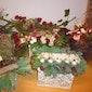 Kersthappening Huize De Veuster Tremelo (Ninde)