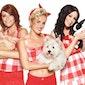 Film : K3 - Het dierenhotel