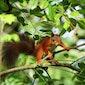 Dag van het Park: Natuurfeest Provincie Antwerpen