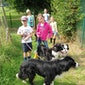 Activak jeugdkamp - Hondenkamp (8-12 jaar)