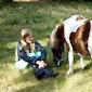 Activak jeugdkamp - Pony meidenkamp (7-12 jaar)