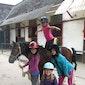 Activak jeugdkamp -  Paardrijden Kerselare (7-12 jaar)