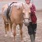 Zeil- en paardrijkamp Nieuwpoort - VOLZET