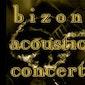 Bizon Acoustic Concert: Steve Jones (GBR)