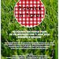 Picknick in 't gras - Huldiging vrijwilligers van 't jaar