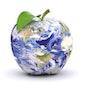 Gezond en ecologisch... Voeding vanuit een ander standpunt bekeken
