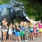 Safarivakantie - Beekse Bergen (Nederland)