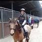 Sportkamp zomervakantie - Paardrijden