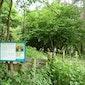 Biotopenwandeling in de Broekelei te Keerbergen