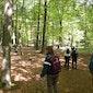 Wandelen in Poederlee met  wandelclub Zandstappers vzw