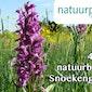 Orchideeënwandeling in  de Snoekengracht
