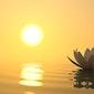 Mindfulnesstraining met An Evenepoel (start reeks) - GEANNULEERD