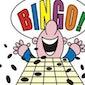 Bingo namiddag