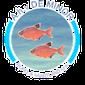 Aquarium tentoonstellingen vanaf 2007 -