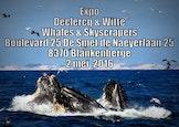 Expositie Declercq & Witte Whales & Skyscrapers