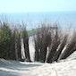 Strand- en duinenwandeling