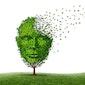Onderdompeling in de wereld van dementie - Volzet