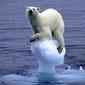 De verschrikkingen van het klimaatdebat